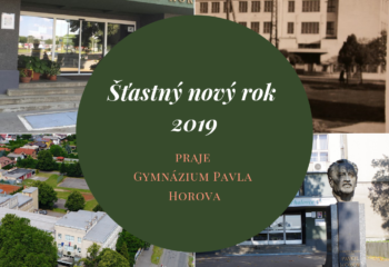 Šťastný nový rok 2019-3